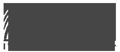 راهکارهای فناوری اطلاعات آرا | AraIT